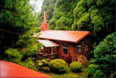 Vacation rental in Volcano's rain forest